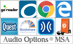 Icons for all the audio options available