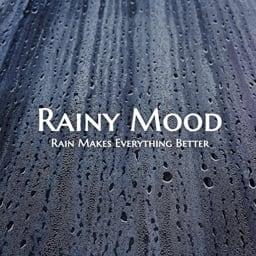 Download Rainy Mood app