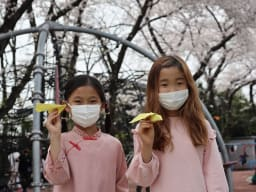 Girls holding paper airplanes under cherry blossom trees