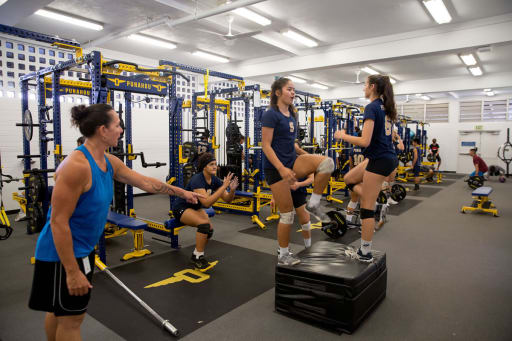 0f6966f501c It's user-friendly to both the highly trained athlete and the student who  is beginning to explore fitness training options.