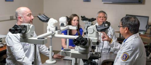 Pathology - Louisiana State University Health Sciences