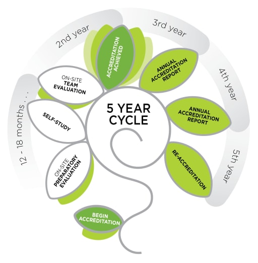 CIS 5-year accreditaation cycle
