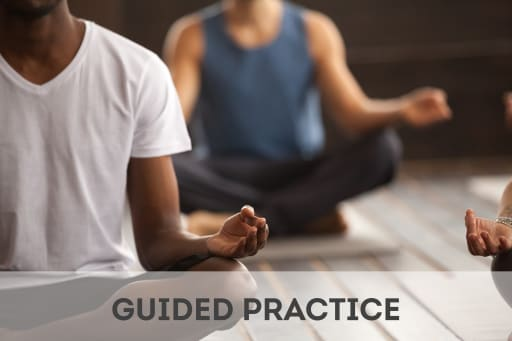 Click here to access guided practice activities.