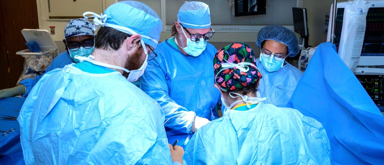 Surgery - Louisiana State University Health Sciences Center