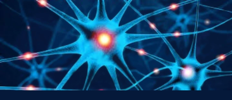 Neurology - Louisiana State University Health Sciences