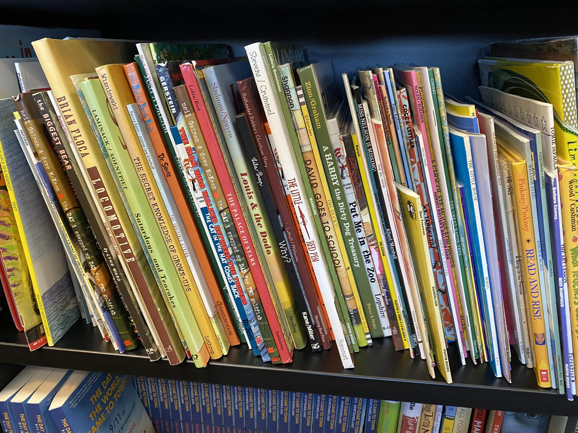 Picture of library books on a shelf.