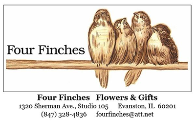 Four Finches